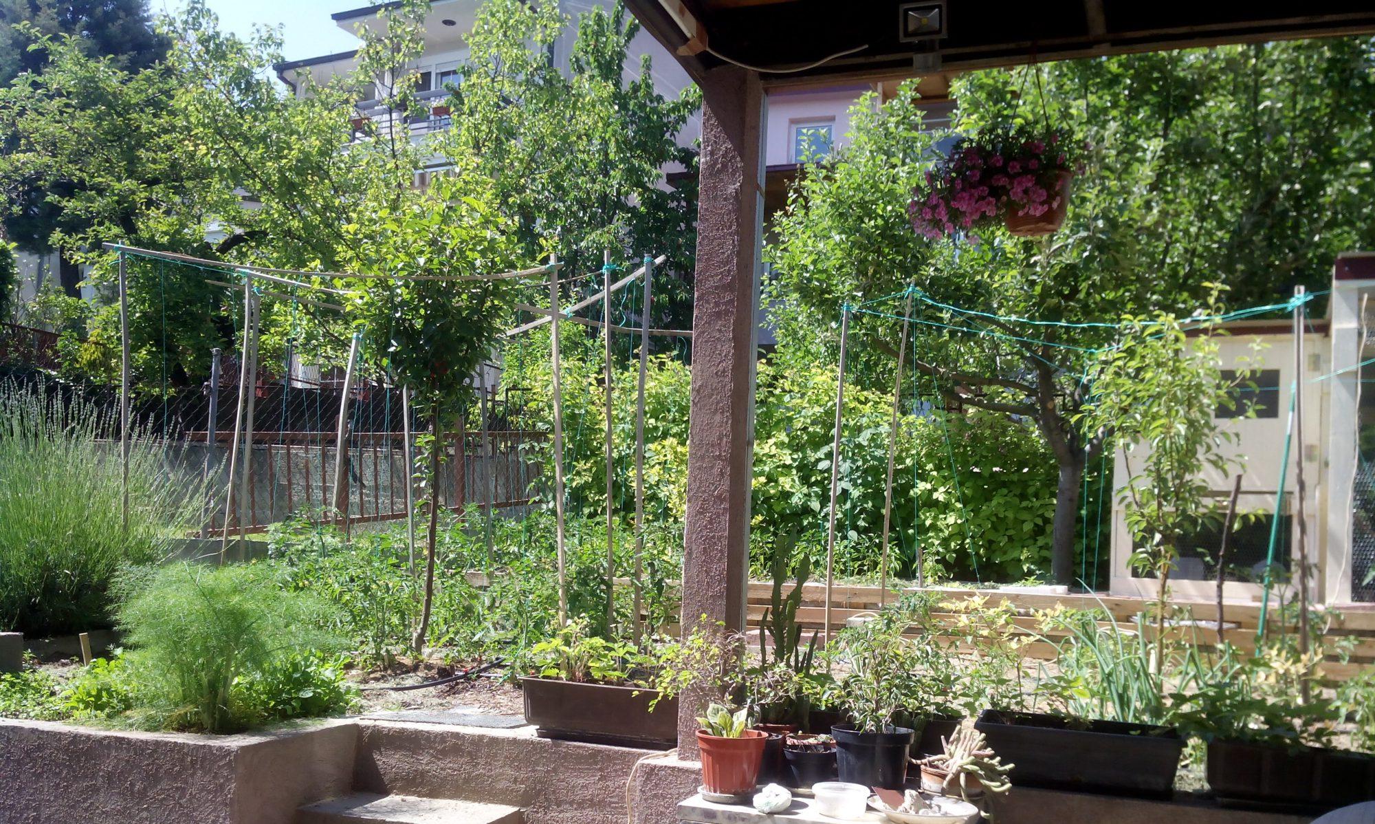 Органска Градина